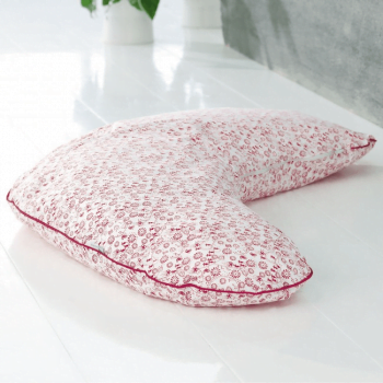 BabyDan Nursing Pillow - Nostalgia Red 2