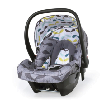 Cosatto Hold 0+ Car Seat Seedling